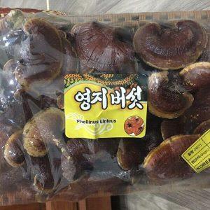 báo giá Nấm Linh Chi núi đá Hàn Quốc